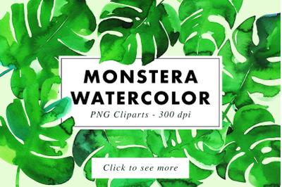 10 Monstera Watercolor Illustrations