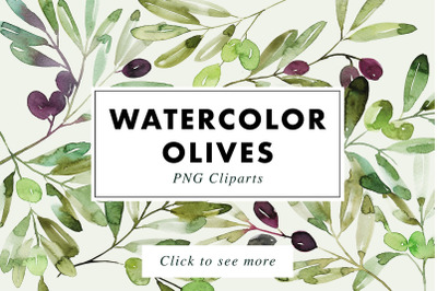 12 Watercolor Olive Branches