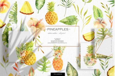Pineapples. Watercolor collection.