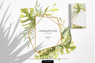 Pineapples. Frame #1