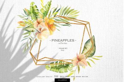 Pineapples. Frame #2