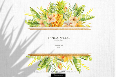 Pineapples. Frame #3