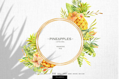 Pineapples. Frame #4