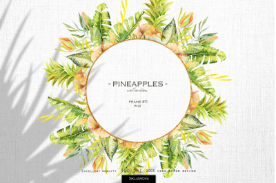 Pineapples. Frame #5