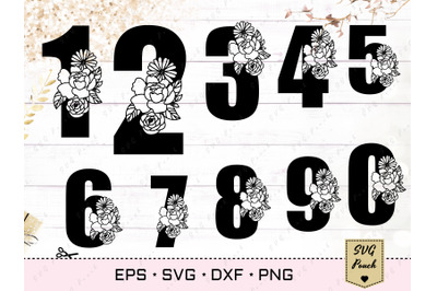 Floral anniversary numbers SVG