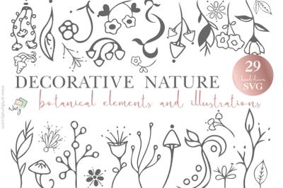 Decorative nature botanical elements illustrations