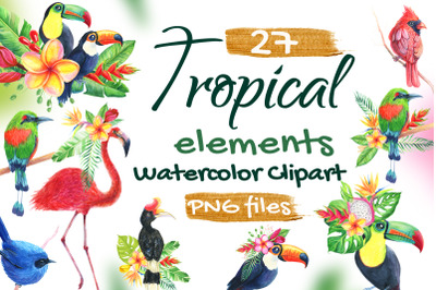 Birds Tropical Watercolor set Clip Art Flamingo, Toucan