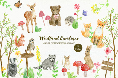 Woodland Creature Illustration
