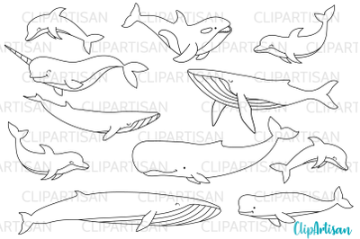 Whales and Dolphins Digital Stamps, SVG, EPS