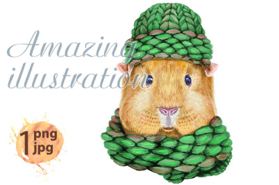 Watercolor portrait of Self guinea pig pig in a knitted hat