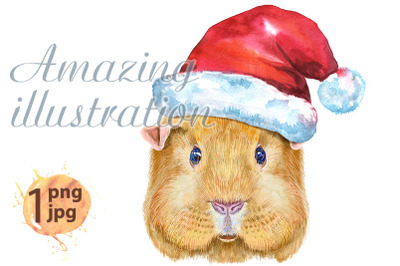 Watercolor portrait of English Self guinea pig with Santa hat