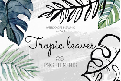 Watercolor&Graphic Tropic leaves clipart