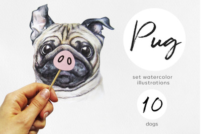 Pug. Watercolor dog set illustrations. Cute and funny 10 dog