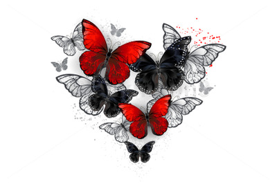 Realistic Black and Red Morpho