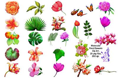 Watercolor Floral Elements Clip Art