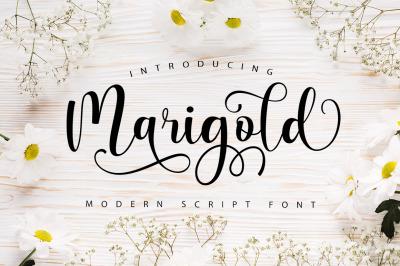 Marigold Script