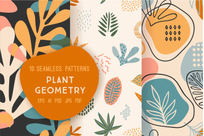 Plant Geometry. Seamless patterns