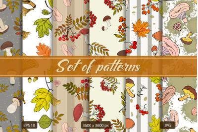 Mushroom Autumn Pattern Set