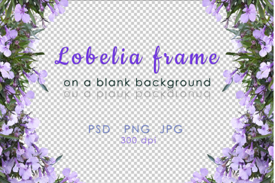 Floral frame with blank background