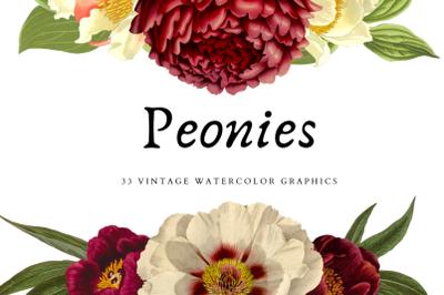 Vintage Watercolor Peonies 2