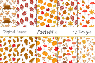 Set Seamless pattern autumn vector illustration
