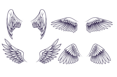 Sketch angel wings. Hand drawn different wings with feathers. Black bi