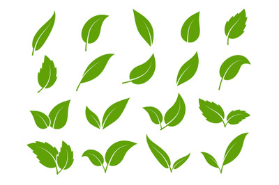 Leaf icon. Green leaves of trees and plants, various shapes. Eco vegan