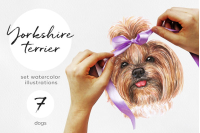 Yorkshire terrier dog. Watercolor set illustrations 7 dogs