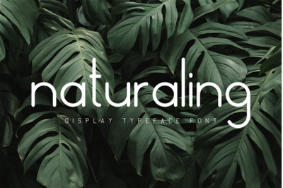 Naturaling Display Font