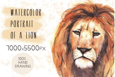 Watercolor portrait of a lion