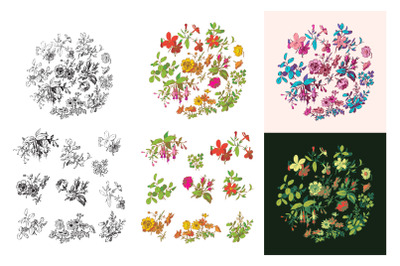 Botanical hand drawn meadow flowers and leaves bouquet wreath isolated