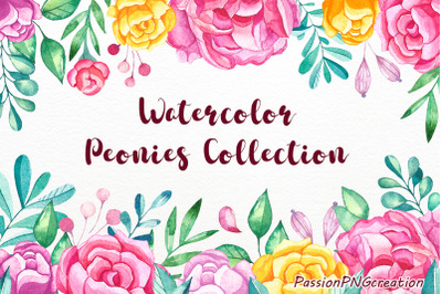 Watercolor peonies collection