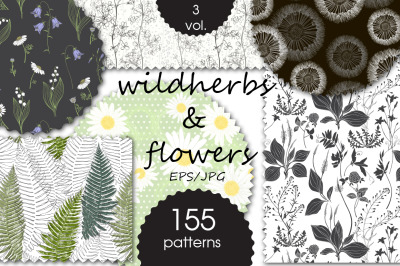 Wildherbs and flowers. Patterns.