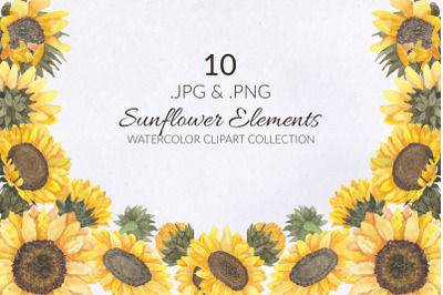 10 Sunflower Watercolor Illustration Set