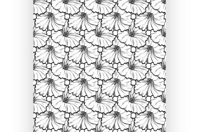 Vector hand drawn petunya seamless pattern