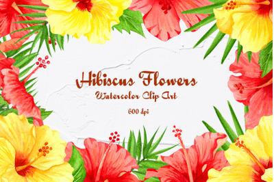 Hibiscus Flowers Watercolor Clip Art