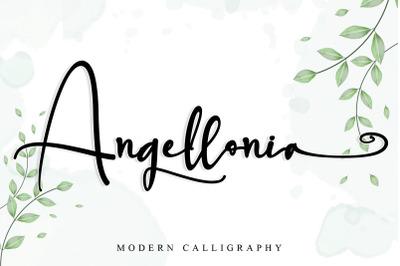 Angellonia