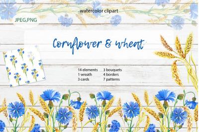 Cornflower & Wheat.Watercolor
