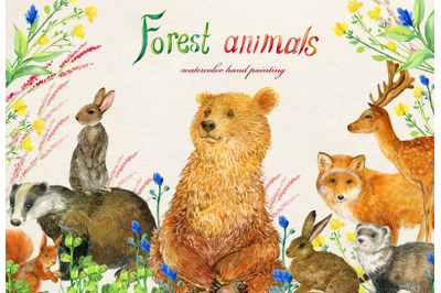 Forest animals .watercolor