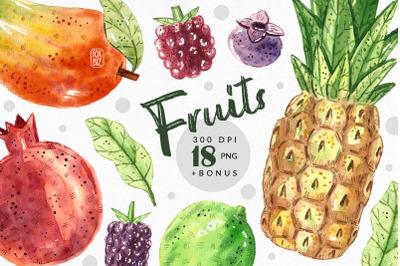 Tropical fruits watercolor clipart. JPEG PNG
