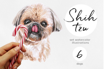 Shih Tzu. Watercolor dog illustrations. Cute 6 dog