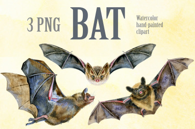 Watercolor bats