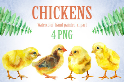 Watercolor yellow chickens