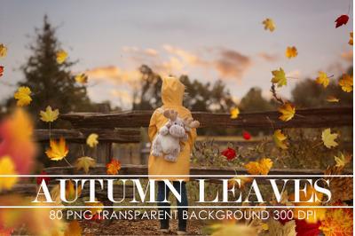 Autumn Leaves Overlays - Photoshop Overlays - Fall PS Overlay - Autumn