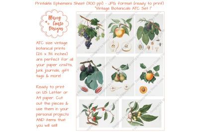 Botanical ATC Card Printables Set 1