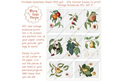 Botanical ATC Card Printables Set 3