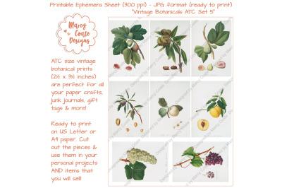 Botanical ATC Card Printables Set 5