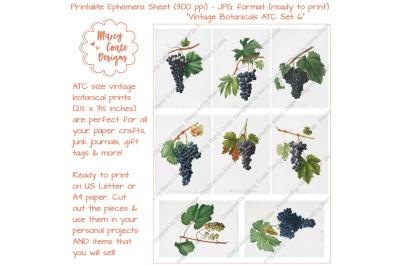 Botanical ATC Card Printables Set 6