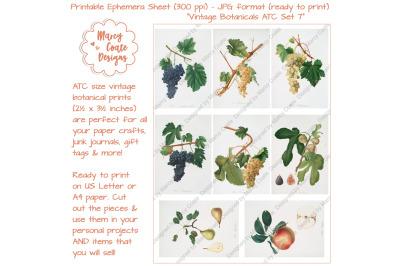 Botanical ATC Card Printables Set 7