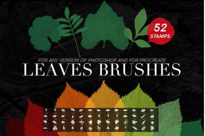 Leaves Photoshop Stamp Brushes